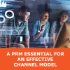 Whitepaper: A PRM Essential for an Effective Channel Model